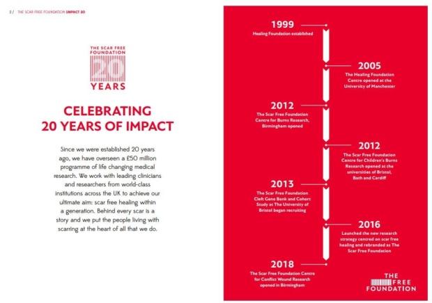 Impact 20 Scar Free Foundation